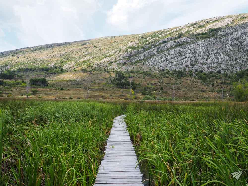 Dragoman marsh. Photo credit: Dario Dionisi