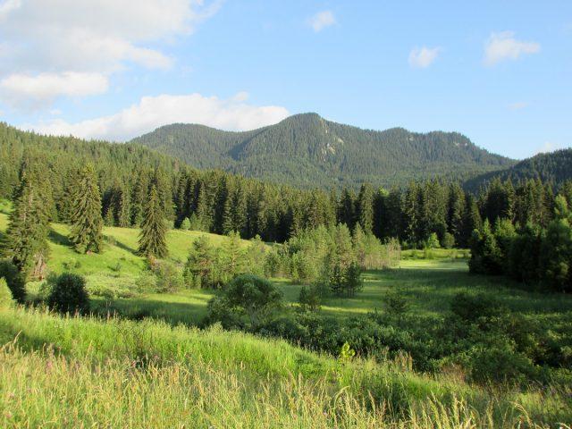 Western Rhodope