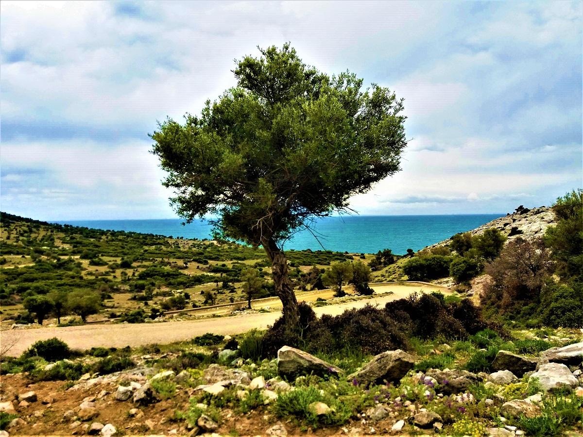 Ismaros Mountain